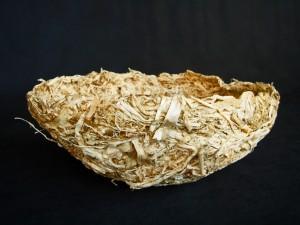 hyacinthaway05